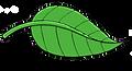 fly leaf.png