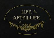 Life After Life logo.png