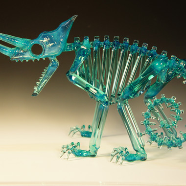 Jackson's chameleon skeleton (meta)