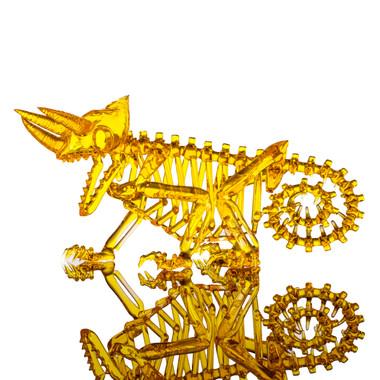 Jackson's chameleon skeleton