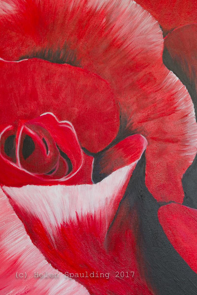 Rose Red by Helen Spaulding