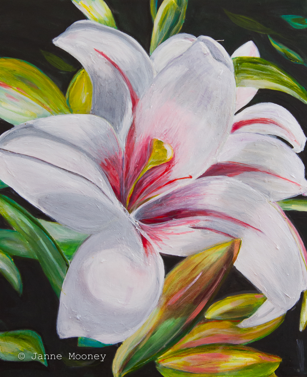 Lilies by Janne Mooney