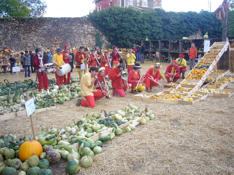 Squash festival near Angers
