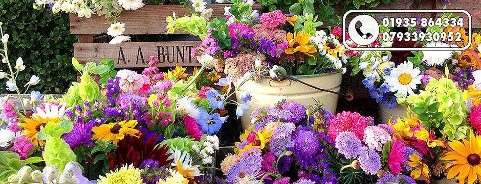 Raindrop Flowers Dorset Famers Market