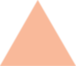 Logos_0001s_0003_Dark-orange-shape.png