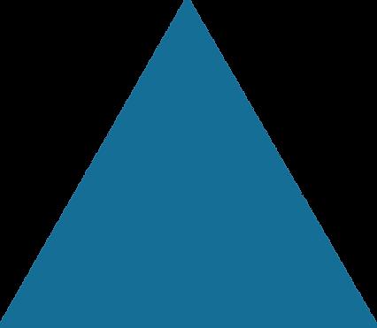 Logos_0001s_0000_Dark-Blue-shape.png