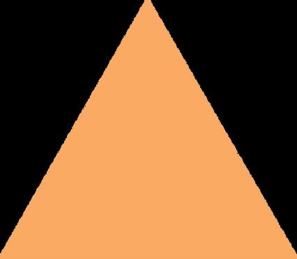 Logos_0001s_0004_Orange-shape.png