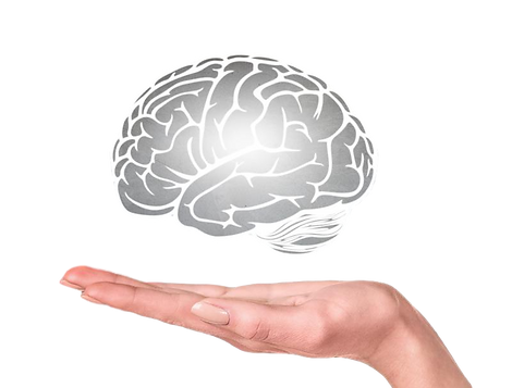 learning-and-the-teen-brain_clipped_rev_