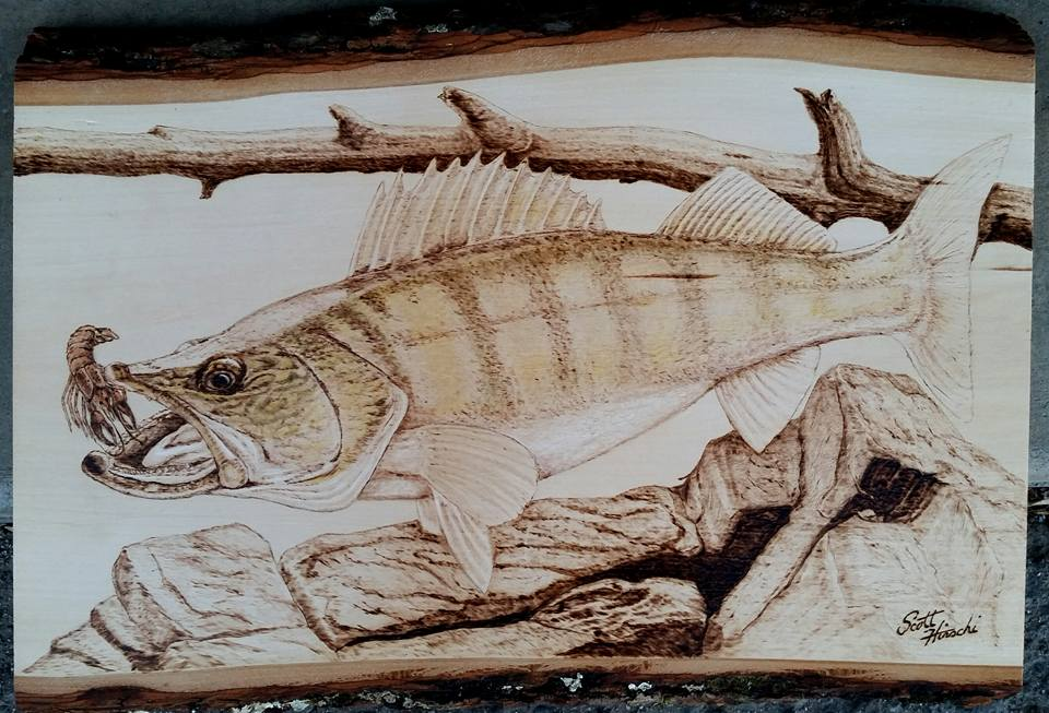 Walleye commission