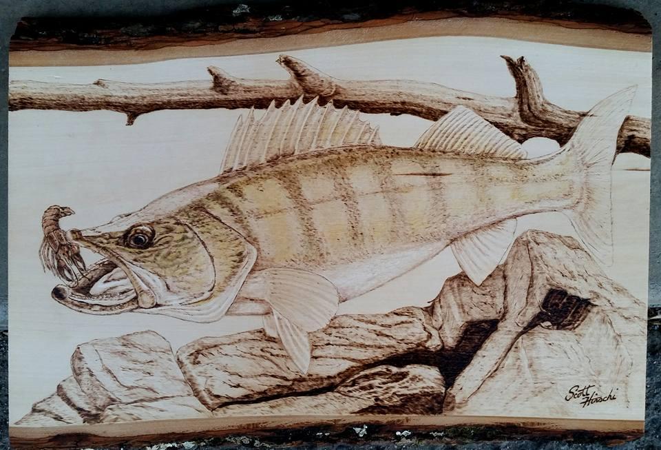 Walleye commission