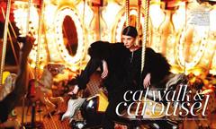 rachele.schank.carousel.1.jpg