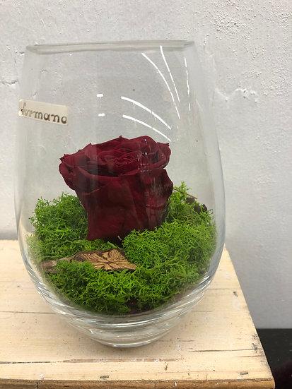 Vase avec rose éternelle