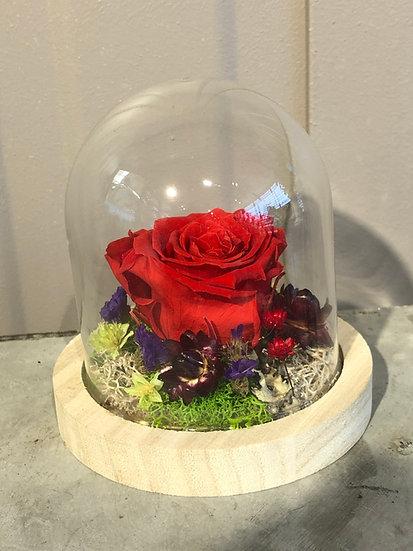Petite cloche avec rose éternelle