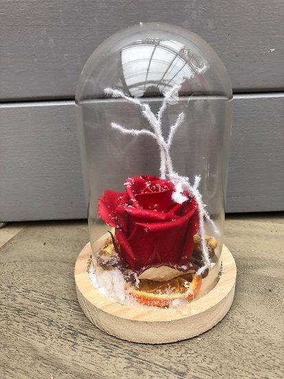 Cloche de noël avec rose éternelle