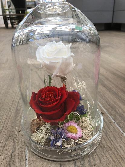 Cloche avec 2 roses éternelles