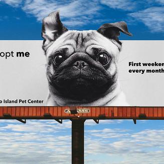 bjornsdottir_billboard.web.jpg