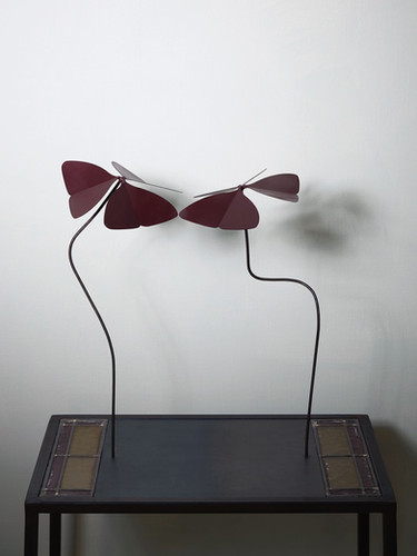 "2014 - Oxalis deppei ""coming together"" - coloured steel - 65 x 50 x 26 cm"