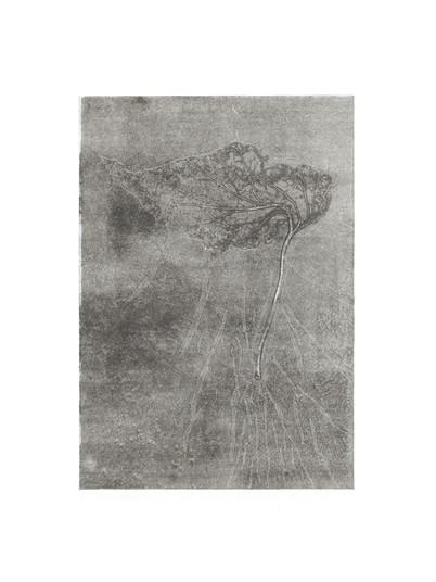 2020 - Monotype - #002-2