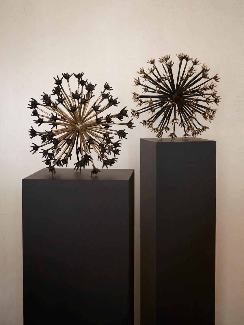 2017 - Allium - bronze - 42 x 42 x 42 cm -
