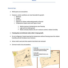 UConn disaster plan