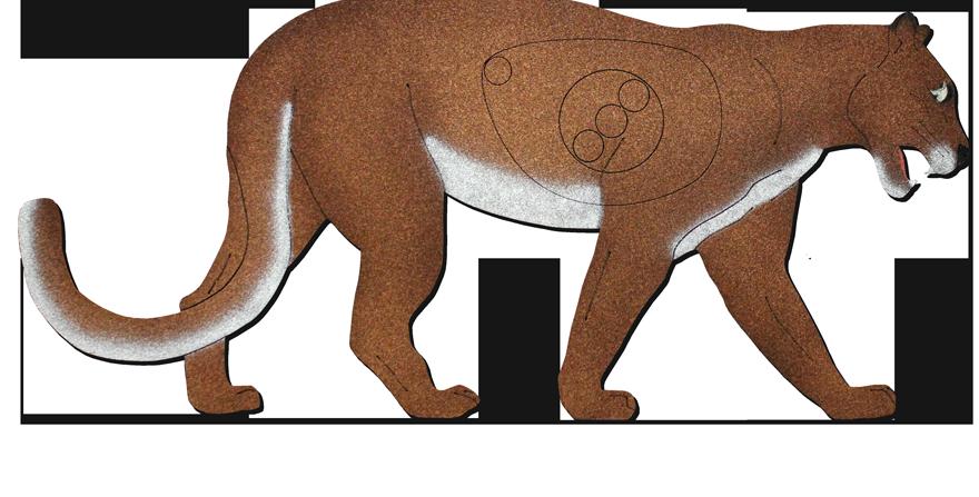 ML-1 Mountain Lion