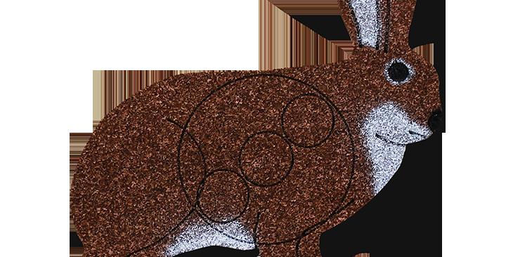 R-2   Rabbit