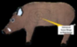 P1 Boar w univ callout.png
