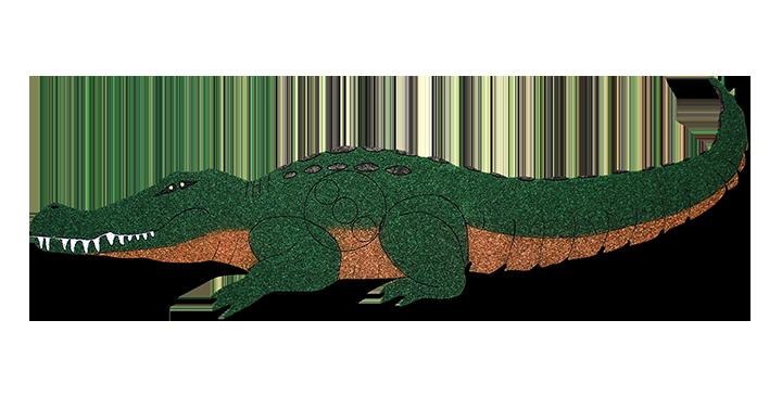 GT  Gator