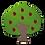 Thumbnail: AP3 Apple Tree