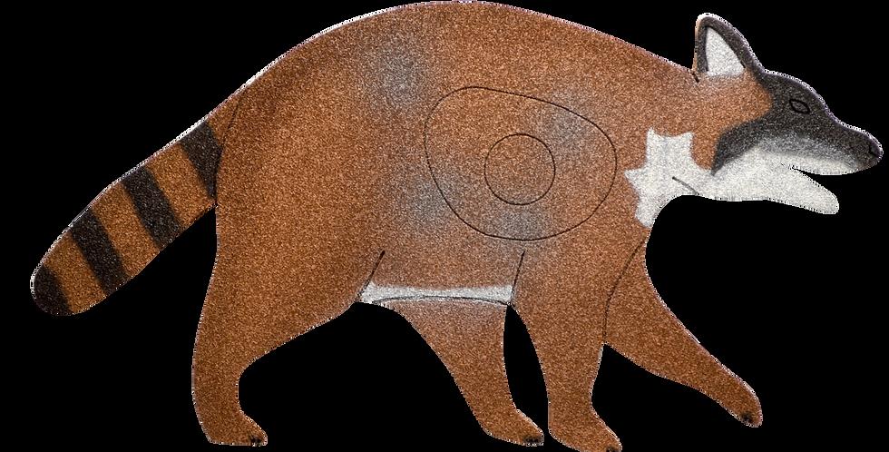 RC-3  Raccoon