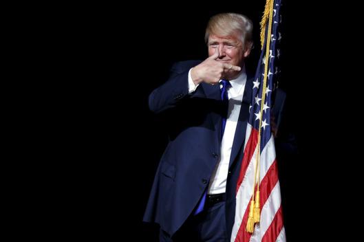Trump Point Flag