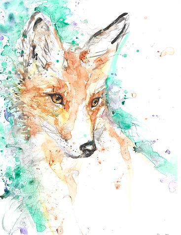 fox rob