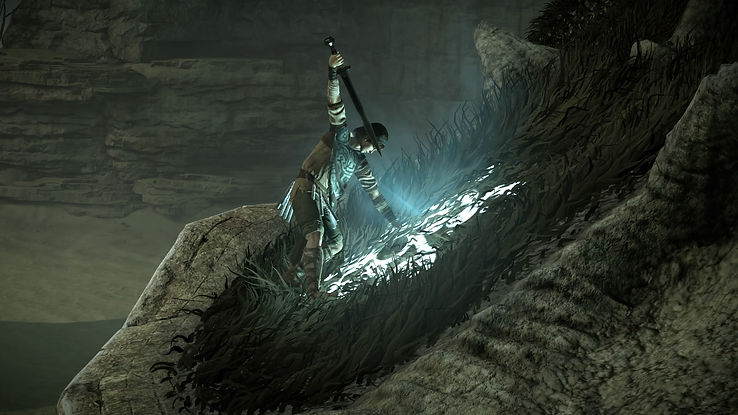 SHADOW_OF_THE_COLOSSUS™_20200801112322