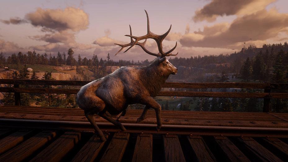 Red Dead Redemption 2_20210826221120.jpg