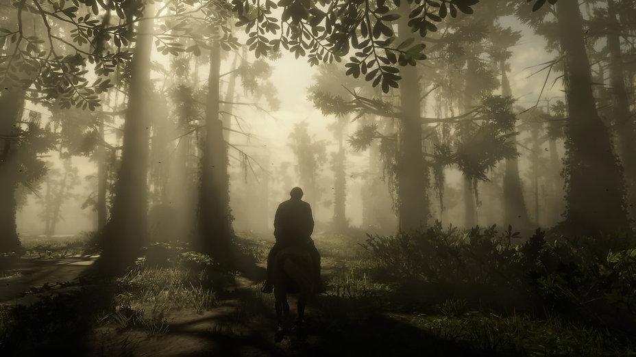 Red Dead Redemption 2_20210706221850.jpg