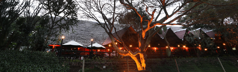 Mara River Lodge (10)