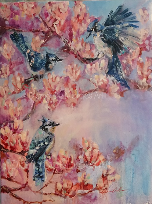 Blue Jays and Blossoms