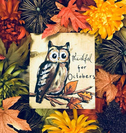 Thankful Owl