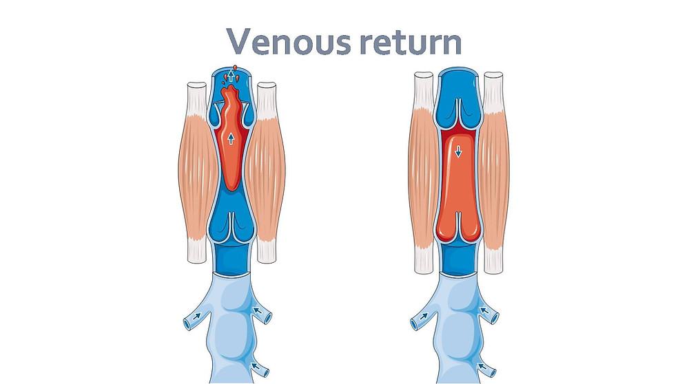 vein treatment thane