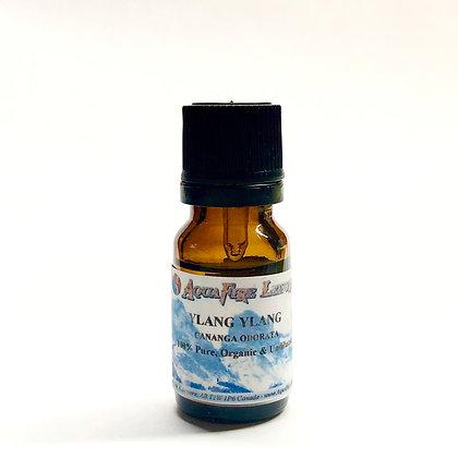 Ylang Ylang 10mLPure Essential Oil - Organic