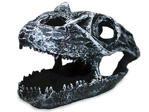 Pangea Dinosaur Skull Cave