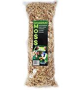 sphagnum-moss-terrarium-bag_5q74-1c.jpg