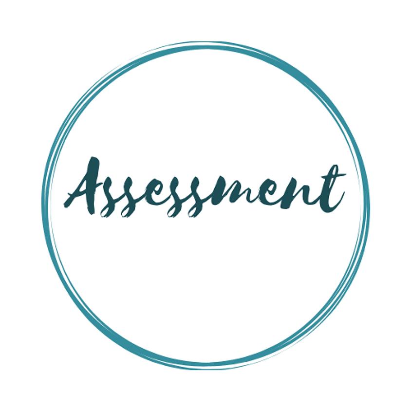 Assessment - 11 July 2019