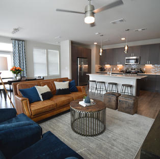 Transitional Apartment