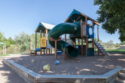 Frog and Butterfly Playground