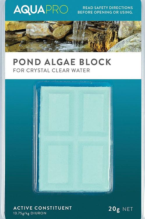 Pond Algae Blocks