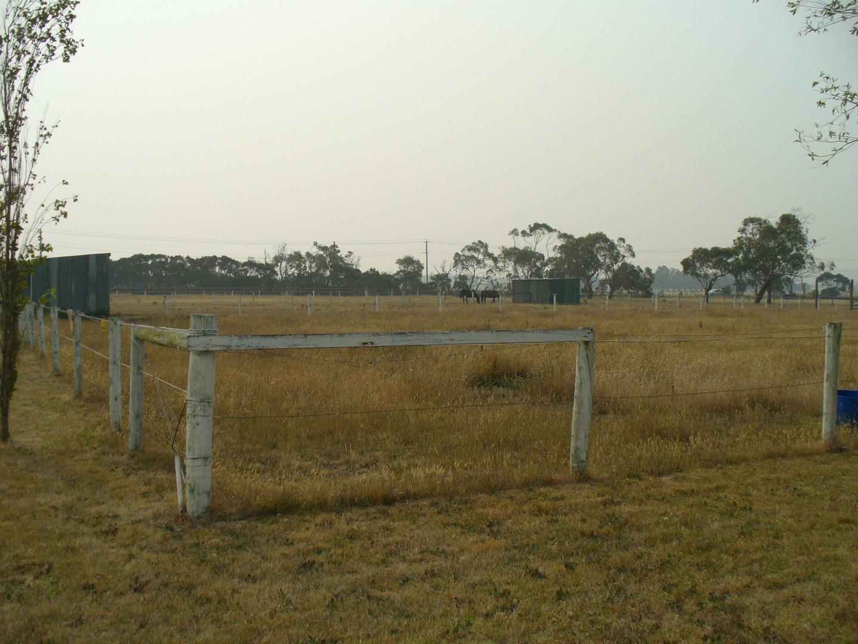 Triffid Park's new nursery site.