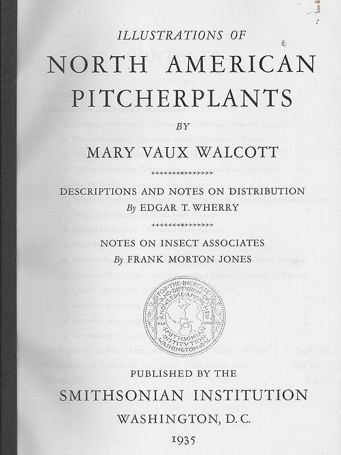 Illustrations of North American Pitcher Plants - Walcott