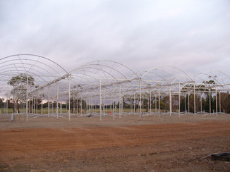 The domed roof is put on.