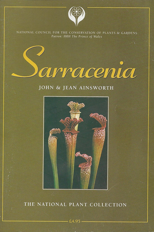 Sarracenia - Ainsworth